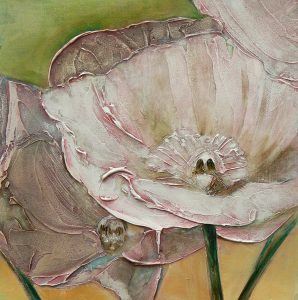 Pink Poppies Up Close by Denise Souza Finney